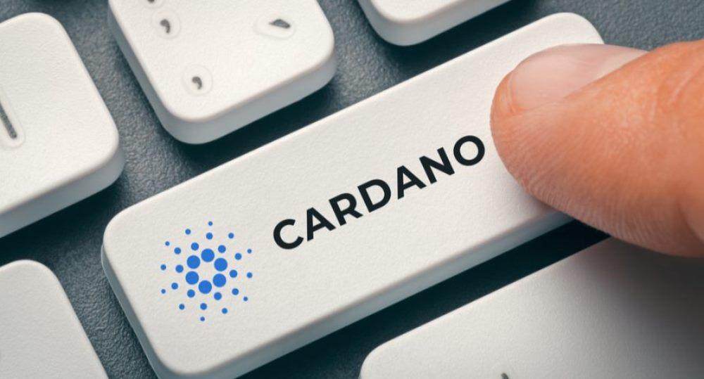 Cardano_Enter