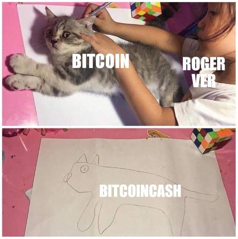 Bitcoin Cash Roger Ver Meme